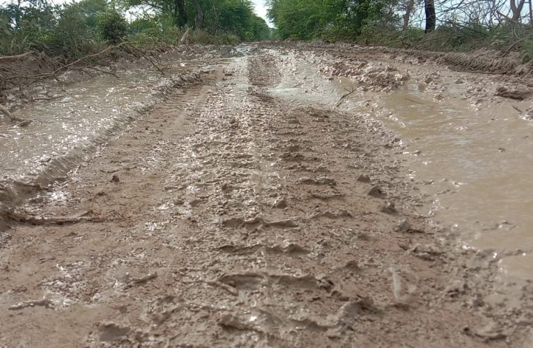 केन्द्रीय राज्यमंत्री के पैतृक गांव में सड़क का सपना नहीं हो सका साकार
