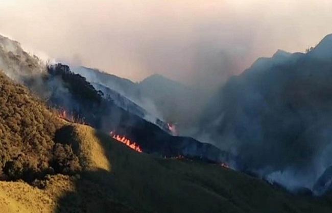 State News : नगालैंड की जूको वैली में भयावह आग, प्राकृतिक सौंदर्य खाक