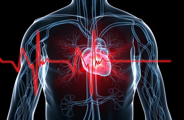 स्वास्थय : एंजाइना के दर्द की न करें अनदेखी, दिल तंदुरुस्त तभी शरीर रहेगा दुरुस्त
