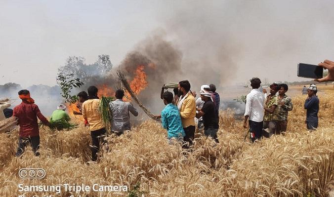 Gonda News:धू-धू करके जल गई आठ बीघा गेंहू की फसल