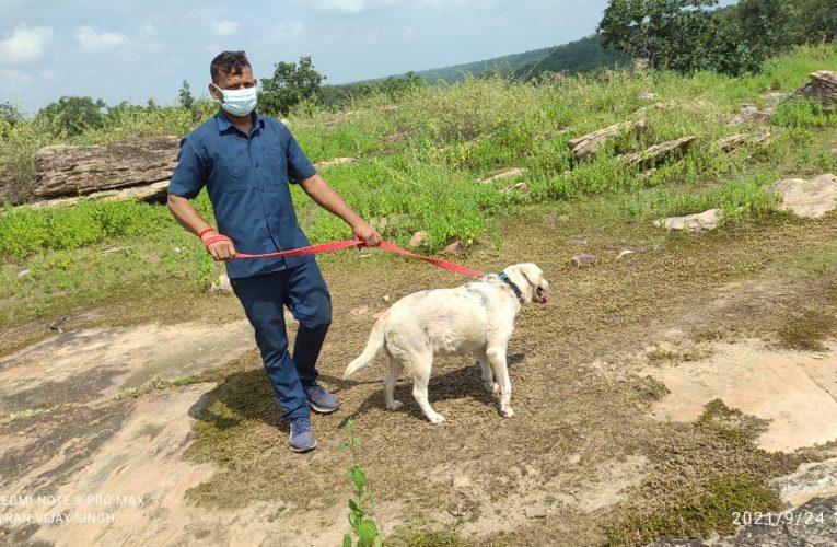 UP News : घर से लापता महिला का जंगल में फांसी पर लटकता मिला शव